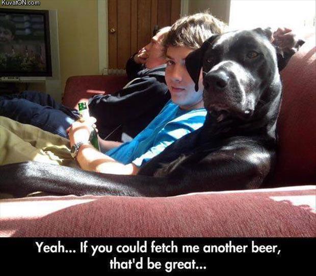 another_beer.jpg