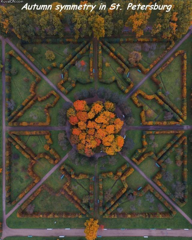 autumn_symmetry.jpg
