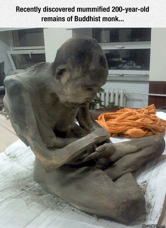 buddhist_mummy_found_recently_in_mongolia.jpg