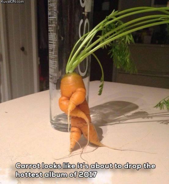 carrot_5.jpg