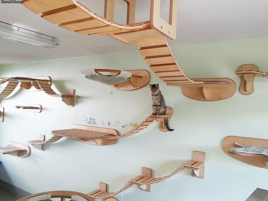Modernes Katzenhaus Pappe Kratzbaum