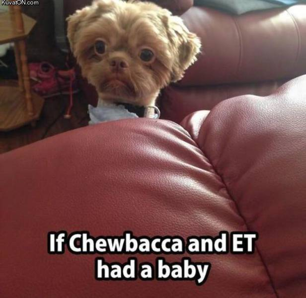 chewbacca_et.jpg