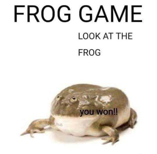 frog_game.jpg