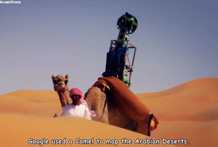 google_kameli.jpg