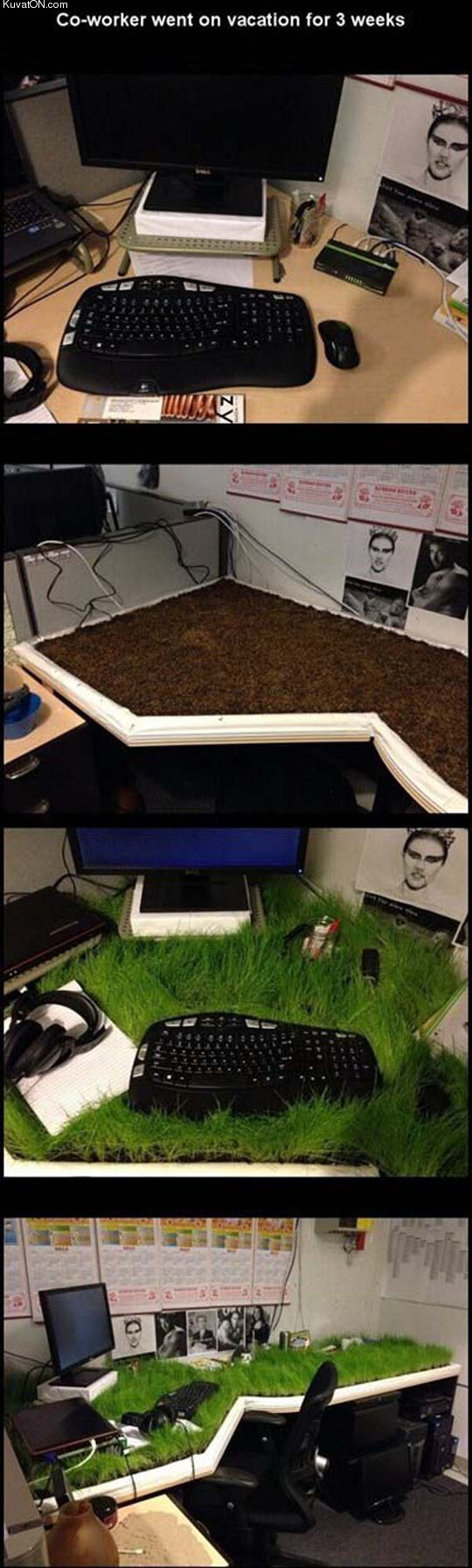 hope_you_like_your_new_environmental_desk.jpg