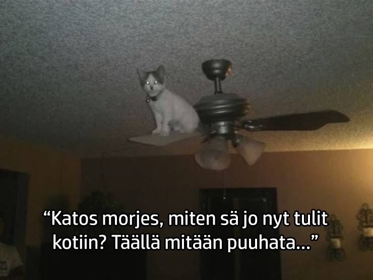 hyvat_nakoalat_varmasti.jpg
