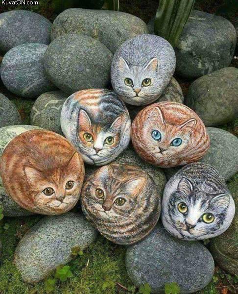 kivikissat.jpg