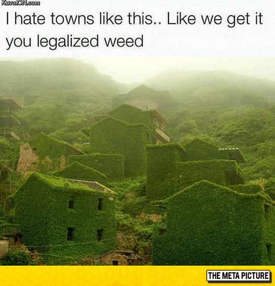 legalize_it.jpg
