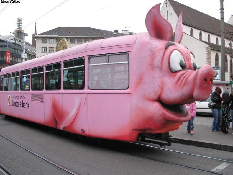 pig_train.jpg