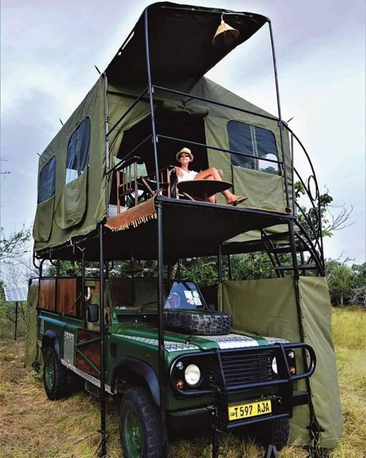 safariviritys.jpg