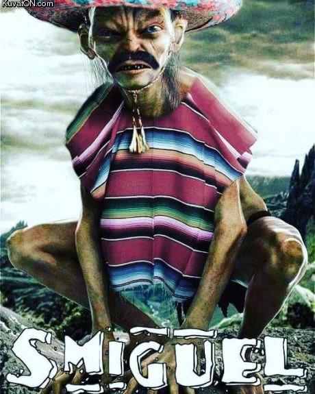 smiguel_pls.jpg
