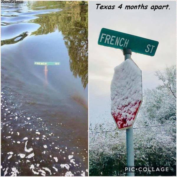 texas7.jpg