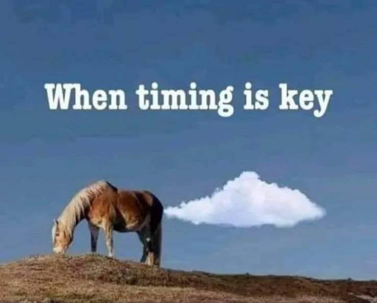 timing21.jpg