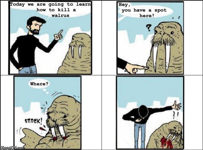walrus_comic.jpg