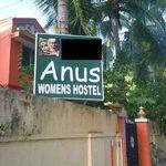 anus_.jpg
