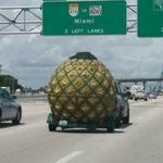 big_pineapple.jpg