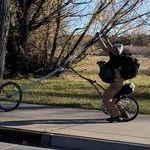 bike76.jpg