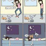 cats_playtime_comic.jpg