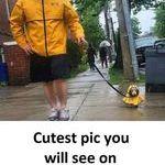 cutestpic.jpg