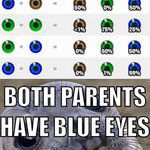 eye_color_of_the_baby.jpg