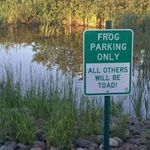 frog_park.jpg