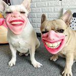 funny_masks.jpg