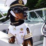 kapteeni_valmiina_purjehtimaan.jpg