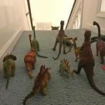 keeping_cat_downstairs.jpg