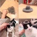 kisselle_hattu.jpg