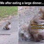 large_dinner.jpg