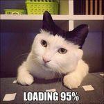 loadingkisse.jpg