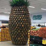 muutama_ananas.jpg