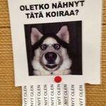 ootko_nahnyt.jpg