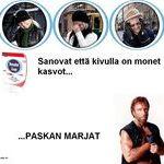panadol_chuck_norris.jpg