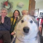 photobomb_doge.jpg