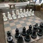 shakkinappula.jpg