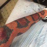 snakeskintattoo2.jpg