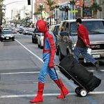 spiderman9.jpg