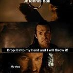 tennisball_and_dog.jpg