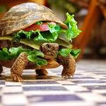 turtle_burger.jpg